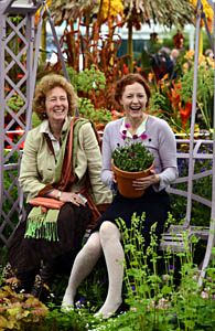 Rosemary Hardy and Geraldine Somerville with Osteospurmum 'in the pink'