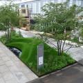 The 9 Billion Conversation Garden