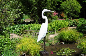 Eddie the Egret