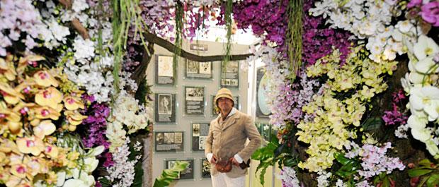 OrchidsBanner