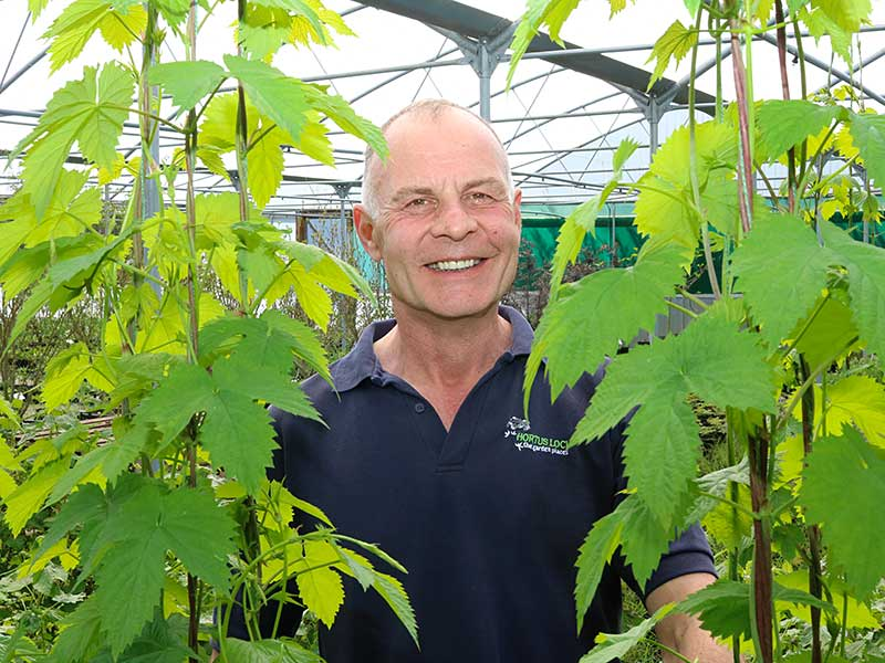 Mark Straver at Hortus Loci with hops grown for RHS Chelsea